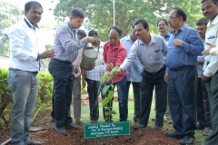 A-Sampling-planted-by-Shri.D.Ranga-Reddy-Chairman-TB-Board